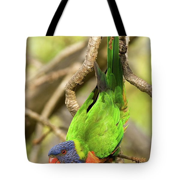 Rainbow Lorikeet 01 Tote Bag