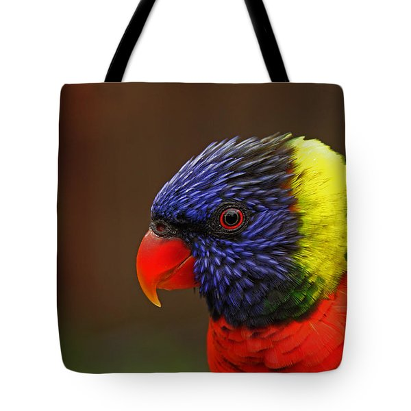 Rainbow Lorikeet Tote Bag by Andy Lawless