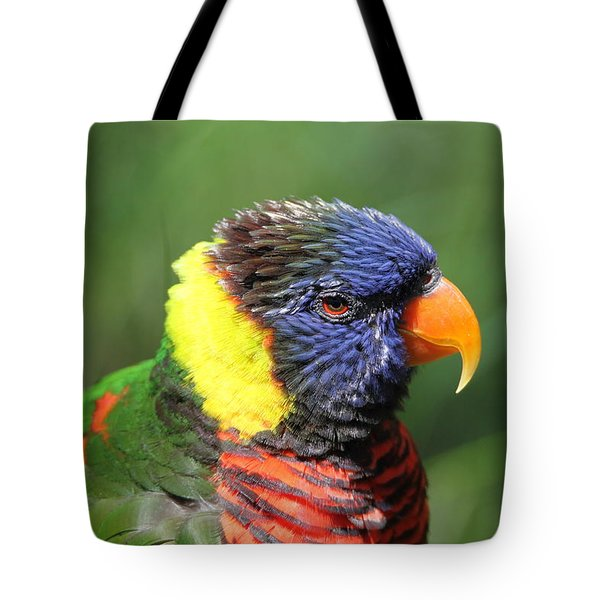 Rainbow Lorikeet Portrait Tote Bag
