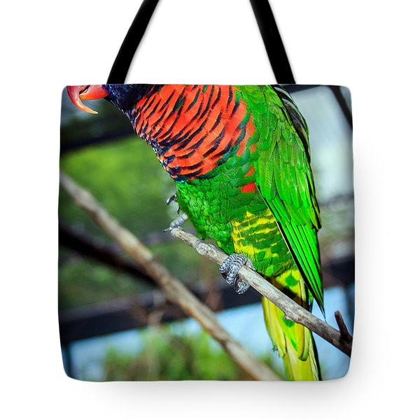 Tote Bag featuring the photograph Rainbow Lory by Sennie Pierson