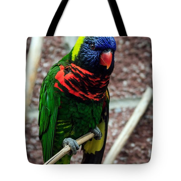 Tote Bag featuring the photograph Rainbow Lory Too by Sennie Pierson