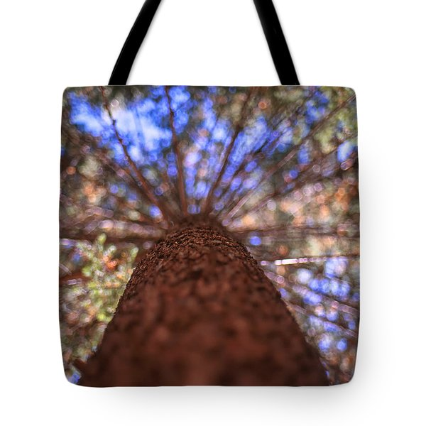 Tote Bag featuring the photograph Rainbow Pine by Aaron Aldrich