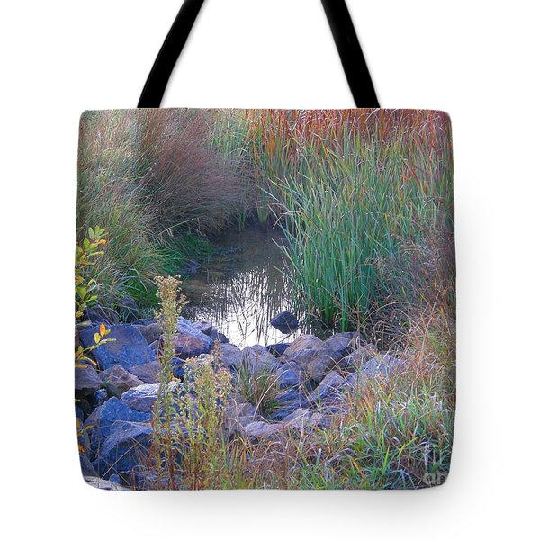 Rainbow Pond Tote Bag