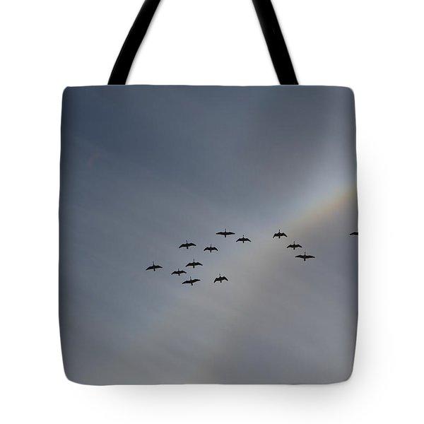 Rainbow Squadron Tote Bag by Brian Boyle