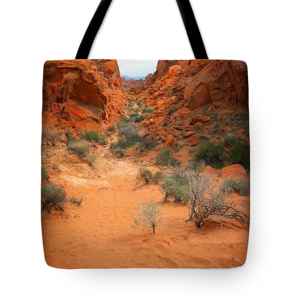 Rainbow Vista Trail Valley Of Fire Tote Bag by Frank Wilson