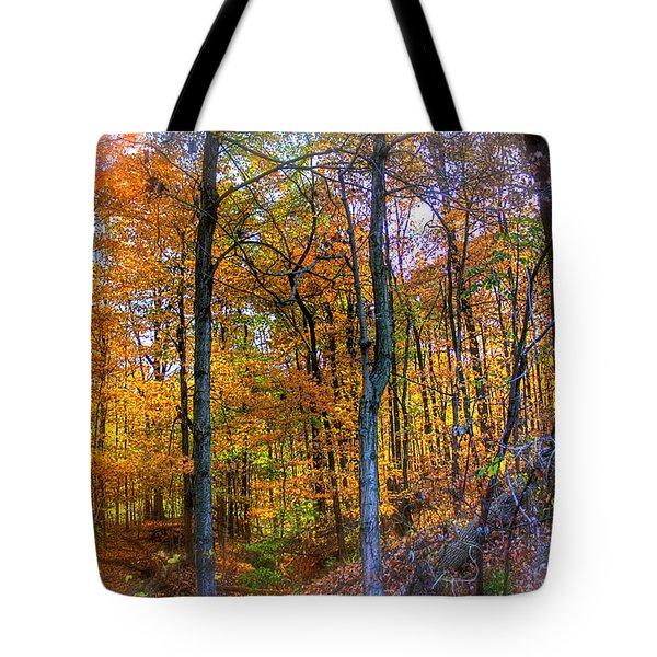 Rainbow Woods Tote Bag