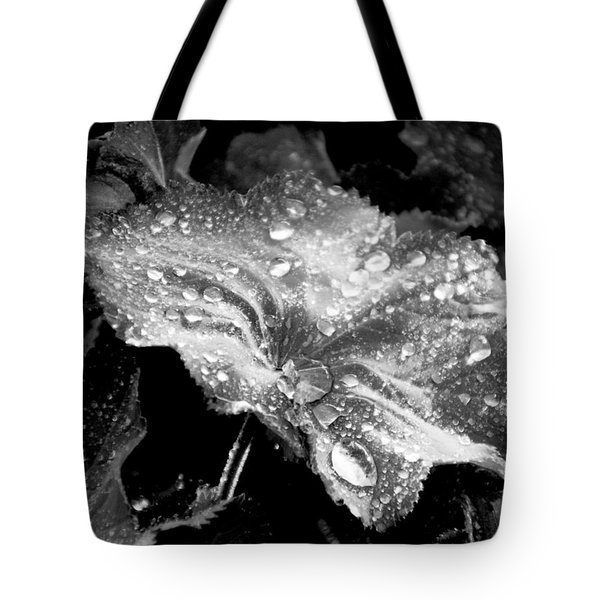 Raindrop Covered Leaf Tote Bag