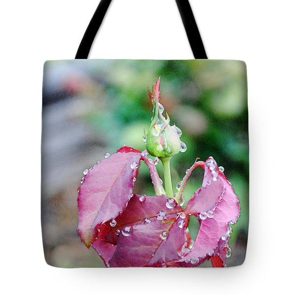 Raindrops And Rosebud 1 Tote Bag