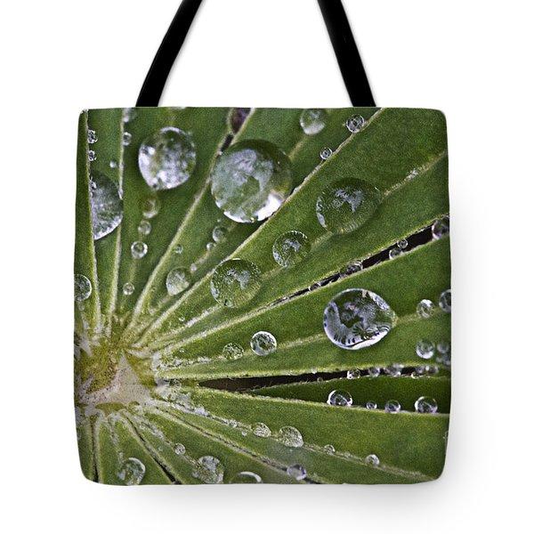 Raindrops On Lupin Leaf Tote Bag by Heiko Koehrer-Wagner