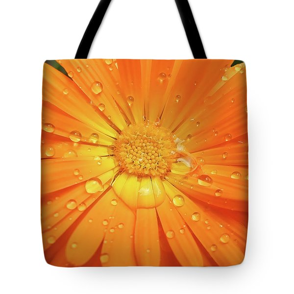 Raindrops On Orange Daisy Flower Tote Bag