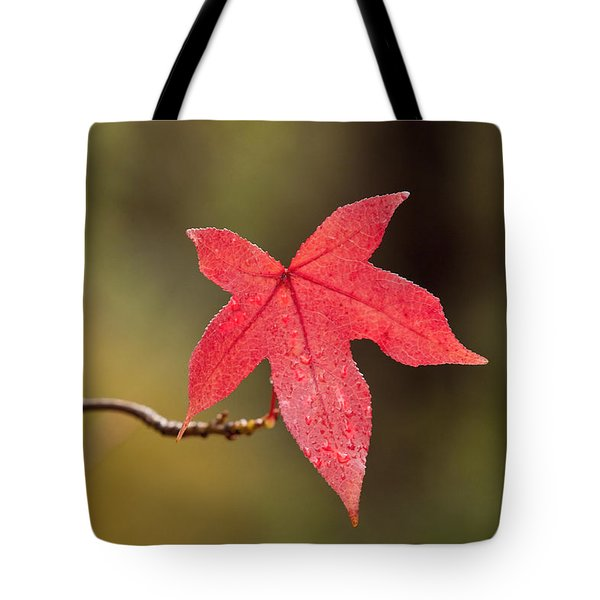 Raindrops On Red Fall Leaf Tote Bag by Michelle Wrighton