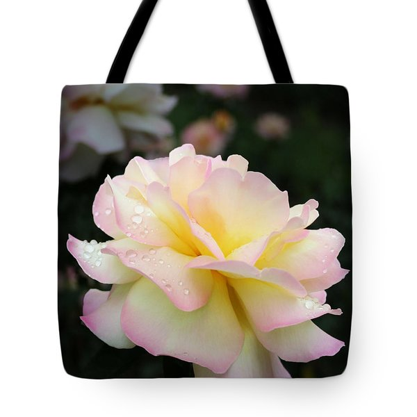 Tote Bag featuring the photograph Raindrops On Rose Petals by Barbara McMahon
