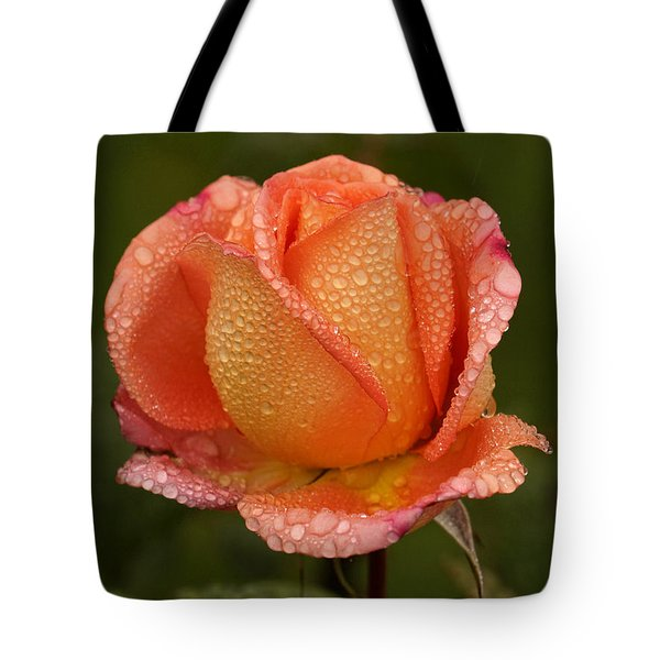 Tote Bag featuring the photograph Raindrops On Roses by Inge Riis McDonald