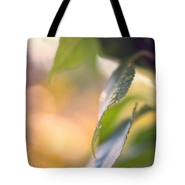 Raindrops Three Tote Bag by Bob Orsillo
