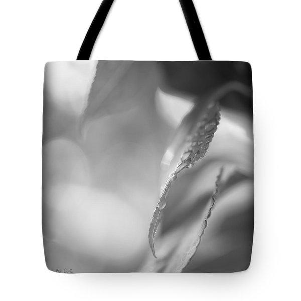 Raindrops Two Tote Bag by Bob Orsillo