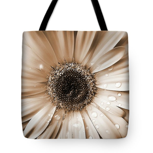 Raindrops On Gerber Daisy Sepia Tote Bag by Jennie Marie Schell