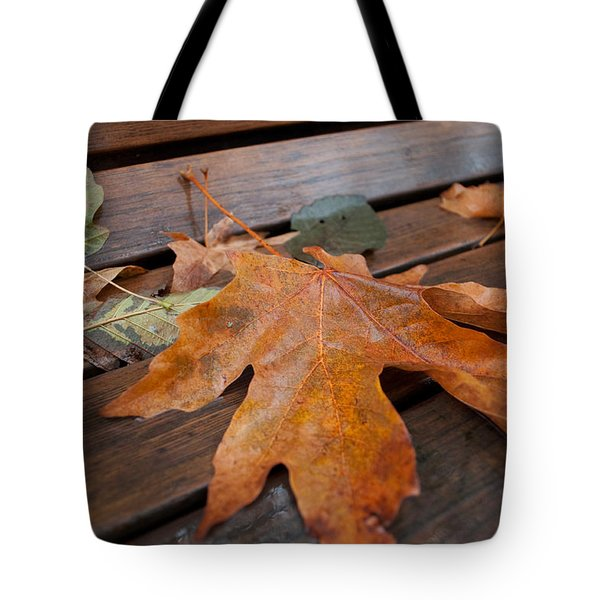 Rainy Day Bench Tote Bag by Gwyn Newcombe