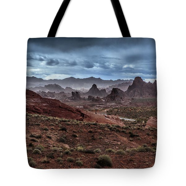 Rainy Day In The Desert Tote Bag