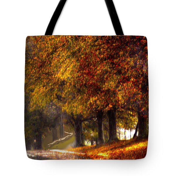 Tote Bag featuring the photograph Rainy Day Path by Lesa Fine