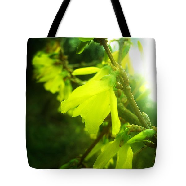 Tote Bag featuring the photograph Rainy Dream by Nina Ficur Feenan