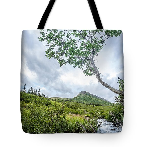Rainy Evening On A Mountain Stream Tote Bag