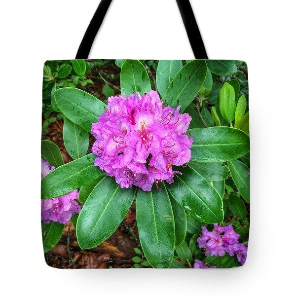 Rainy Rhodo Tote Bag