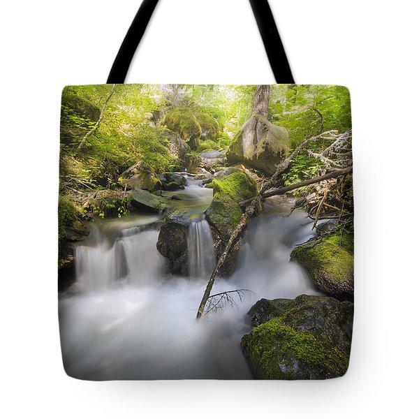 Ramona Creek Tote Bag by David Gn