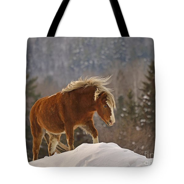 Rancher's Dream Tote Bag