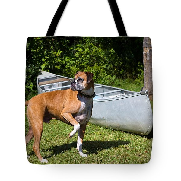 Ranger The Boxer Tote Bag by Stephanie McDowell