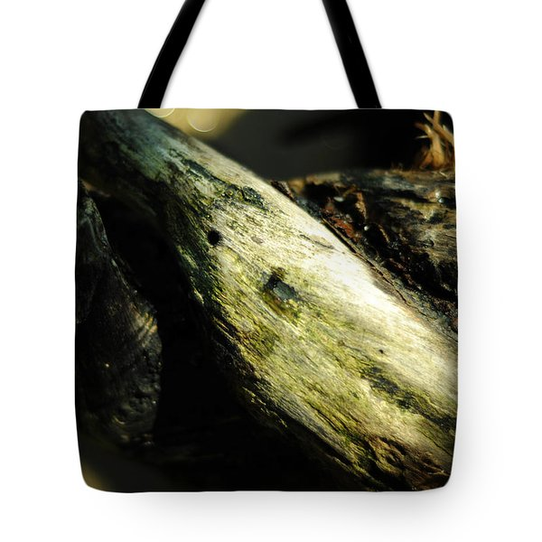 Rapture On The Lonely Shore Tote Bag by Rebecca Sherman