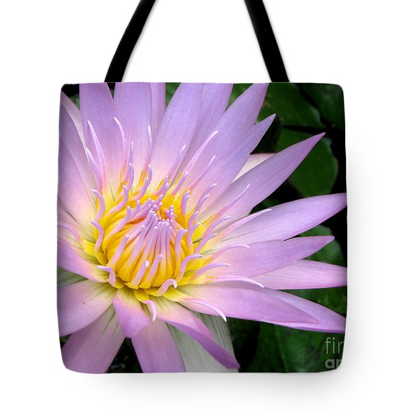 Rare Beauty Tote Bag