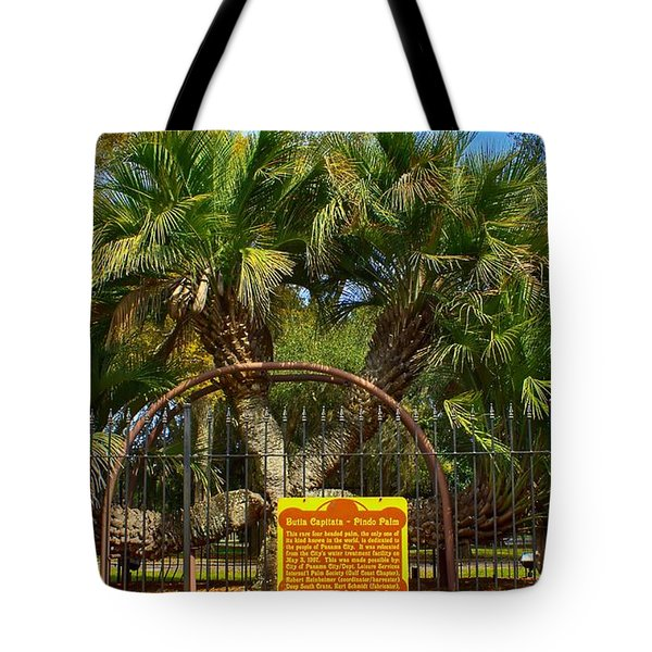 Rare Palm Tree Tote Bag by Debra Forand