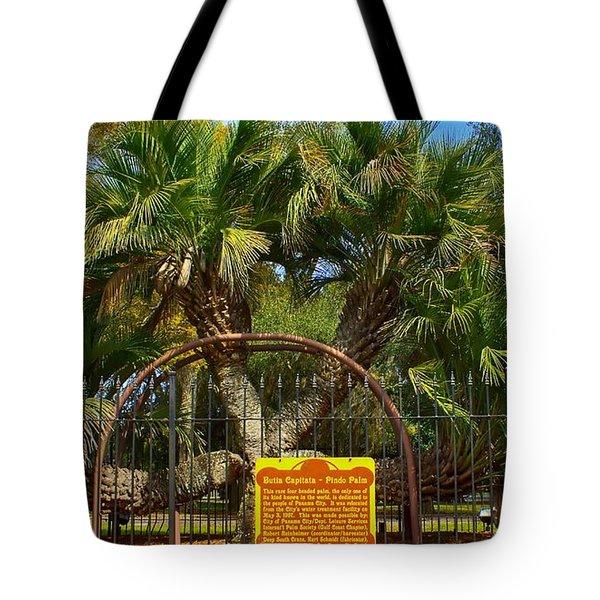 Rare Palm Tree Tote Bag