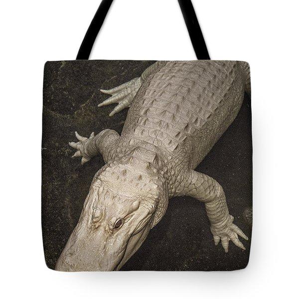 Rare White Alligator Tote Bag