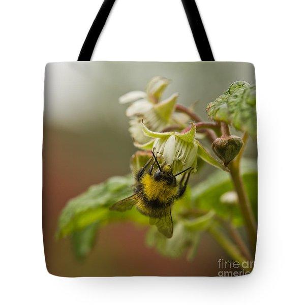 Raspberries And Honey Tote Bag by Liz  Alderdice