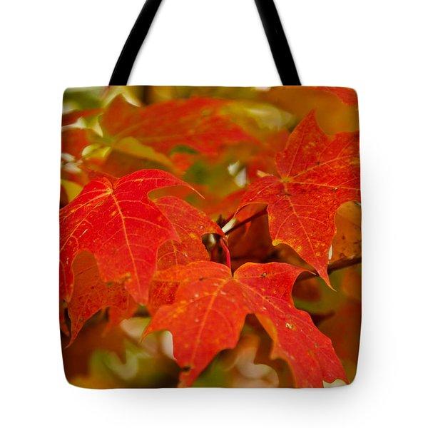 Ravishing Fall Tote Bag