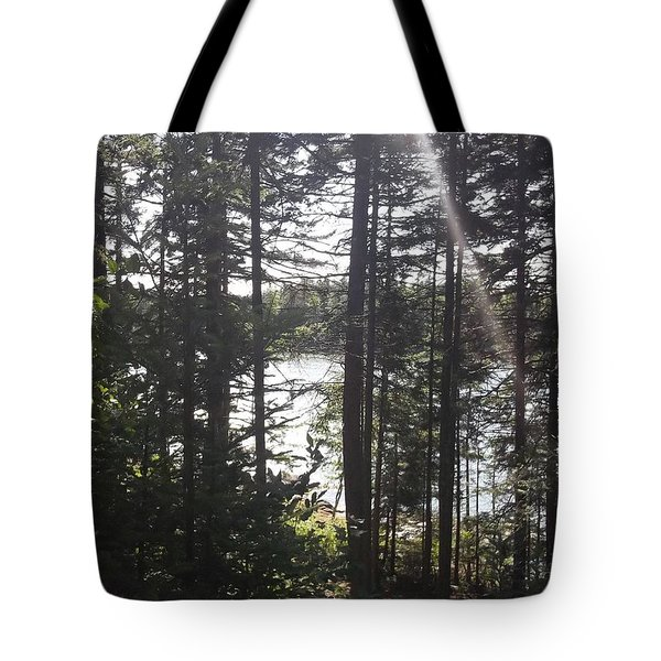 Ray O Light Tote Bag by Melissa McCrann