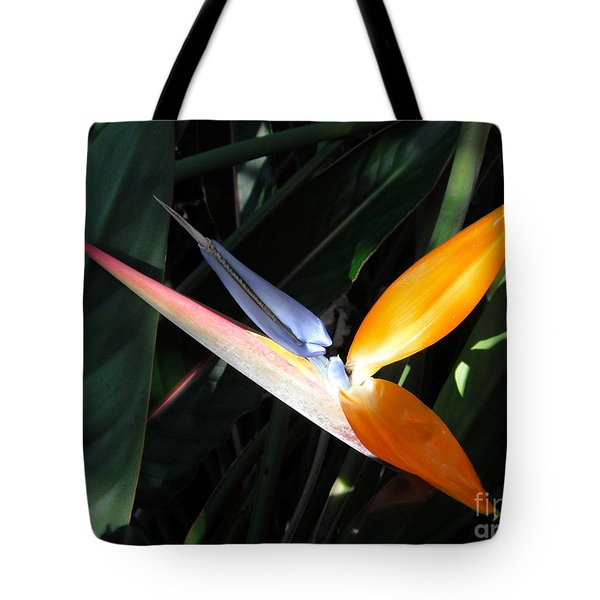 Tote Bag featuring the photograph Ray Of Light by David Lawson