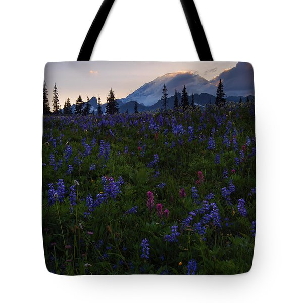 Rays Over Rainier Tote Bag by Mike  Dawson