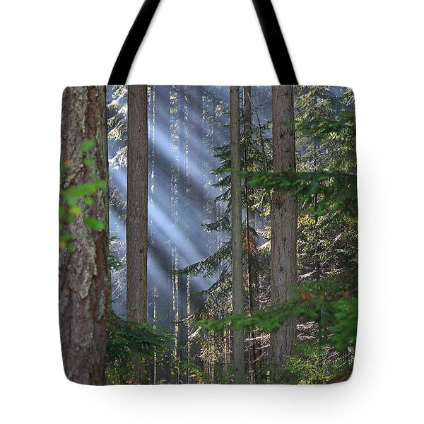 Rays Tote Bag by Randy Hall