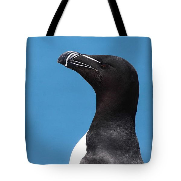 Razorbill Profile Tote Bag by Bruce J Robinson