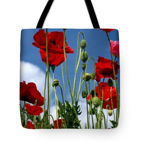 Tote Bag featuring the photograph Reach For The Sky by Baggieoldboy