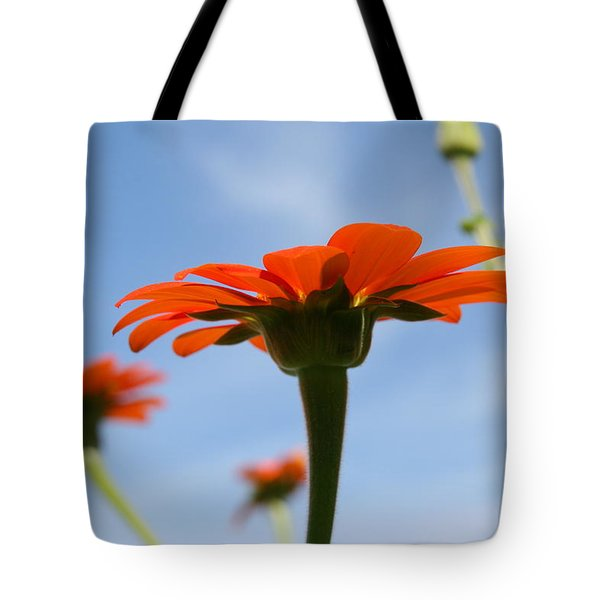 Reach For The Sky Tote Bag by Neal Eslinger