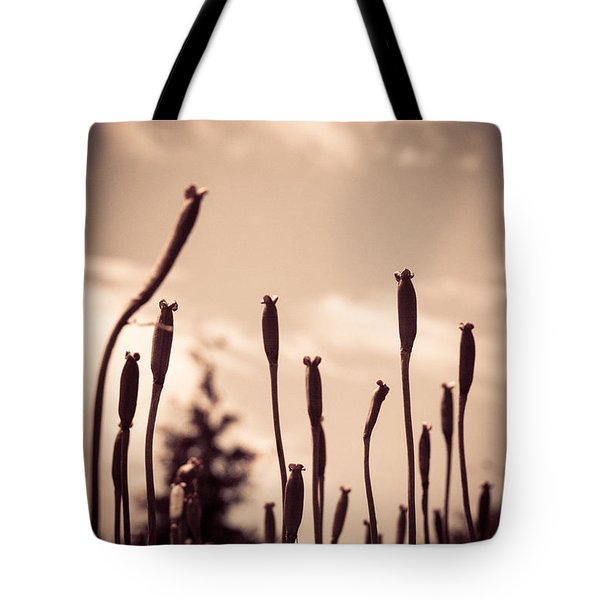 Flowers Reaching For The Sky Tote Bag