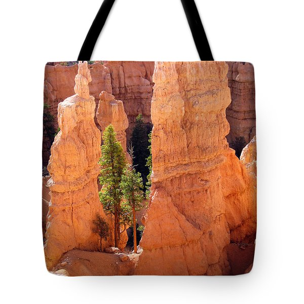 Reaching Towards The Sun Tote Bag