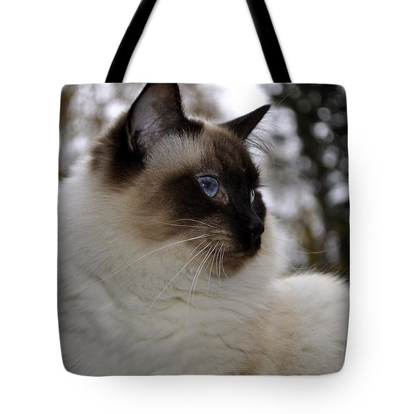 Ready For My Closeup Tote Bag