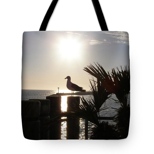 Tote Bag featuring the photograph Ready For Sunset by Bev Conover
