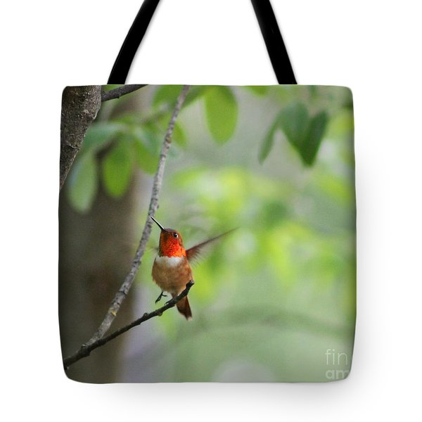 Ready For Take-off Tote Bag