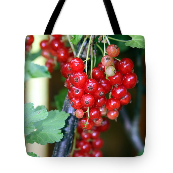 Ready To Eat Berries Tote Bag by Vadim Levin