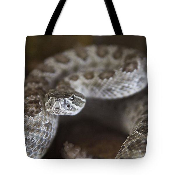 A Rattlesnake Thats Ready To Strike Tote Bag